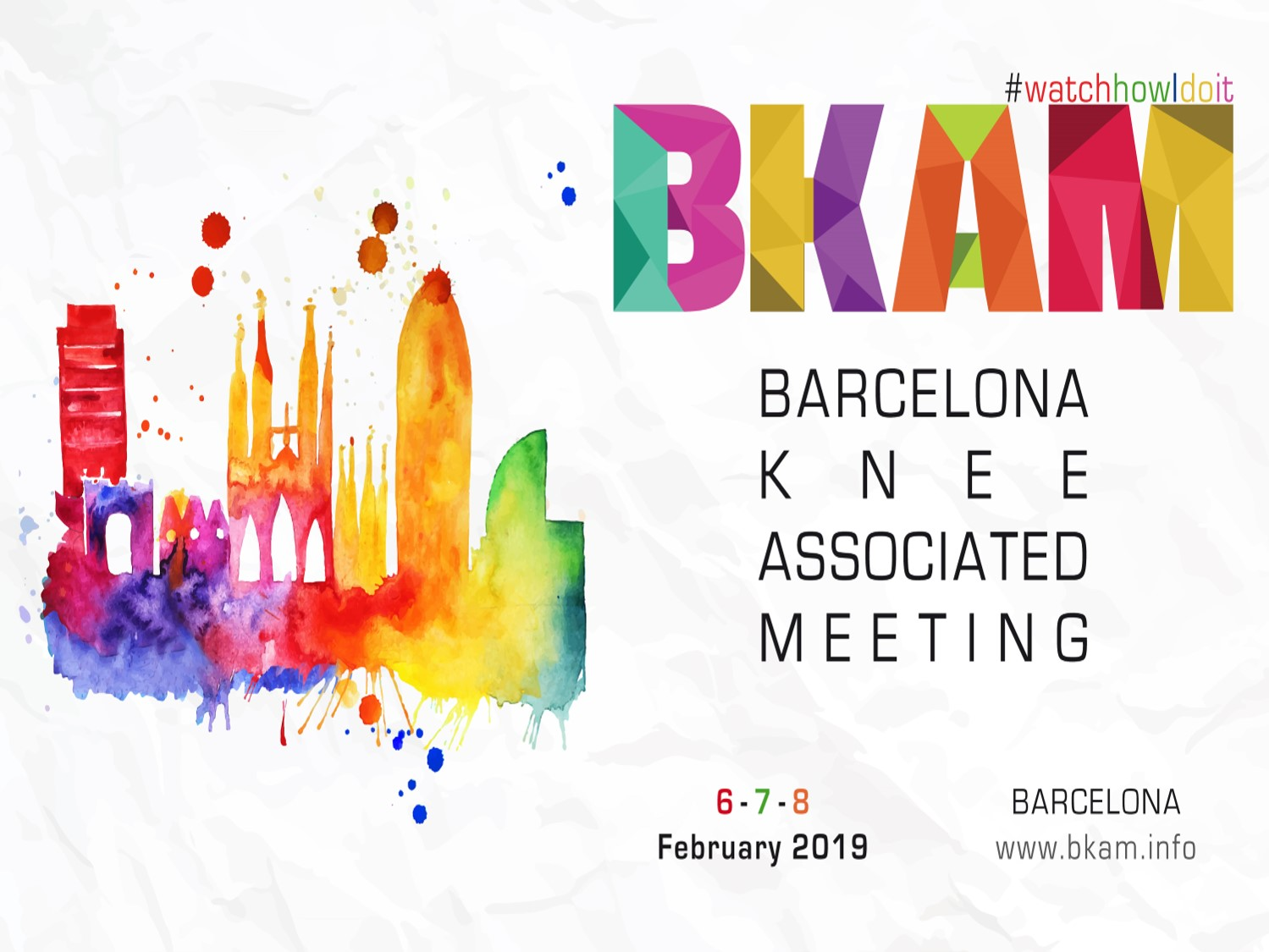 Barcelona Knee Associated Meeting